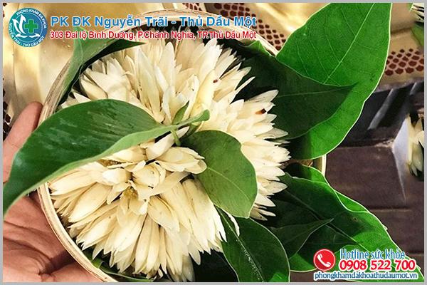 Thực hư việc dùng hoa ngọc lan chữa vô sinh ở nữ